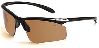 Bolle Warrant Sunglasses
