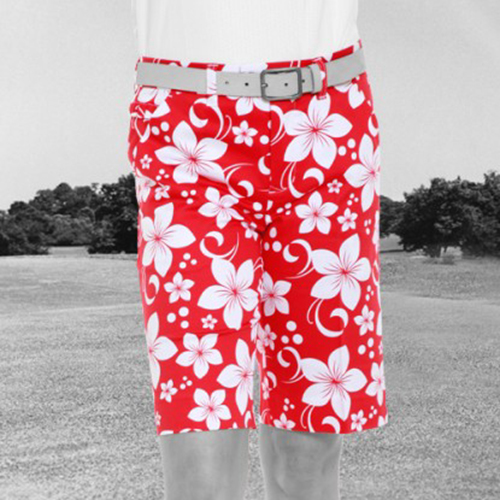 Image of Royal & Awesome Womens Shorts - Wahine Magnet